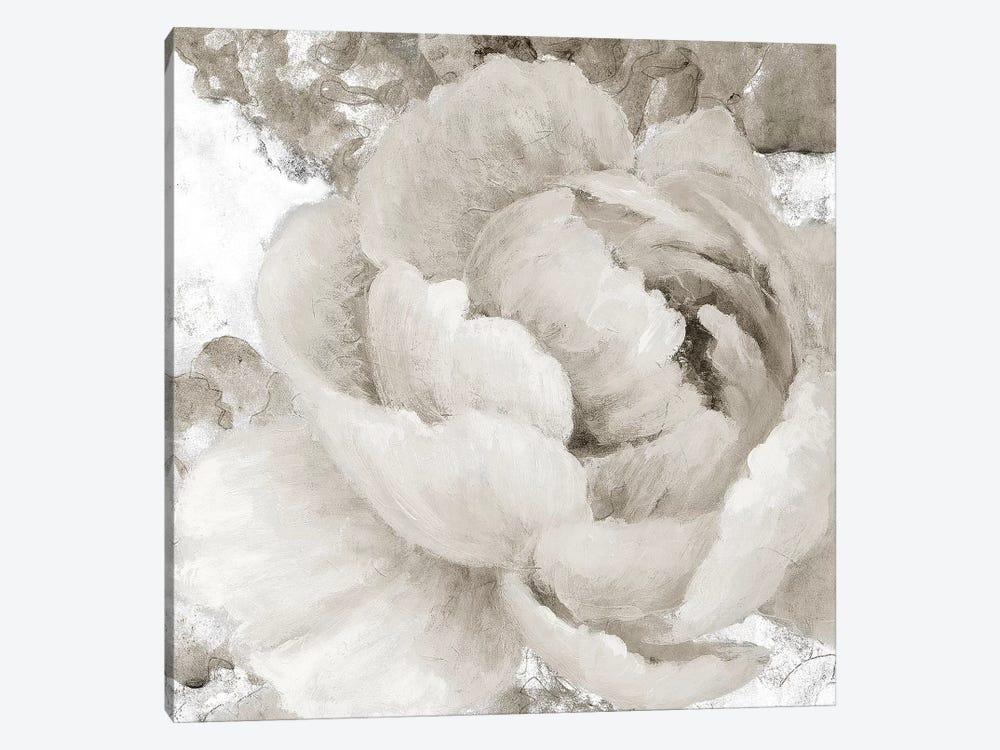 Light Grey Flowers II by Lanie Loreth 1-piece Canvas Wall Art