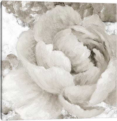 Light Grey Flowers II Canvas Art Print