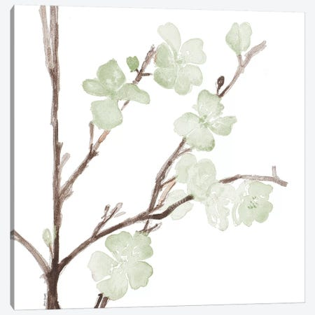 Mint Bloom Stems Canvas Print #LNL121} by Lanie Loreth Canvas Wall Art