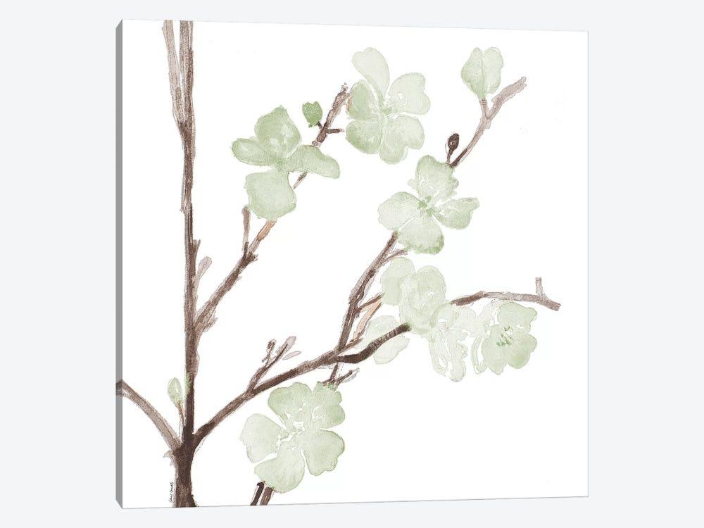 Mint Bloom Stems by Lanie Loreth 1-piece Canvas Wall Art
