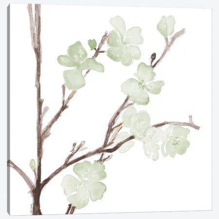 Mint Bloom Stems Canvas Print #LNL121} by Lanie Loreth Canvas Wall Art