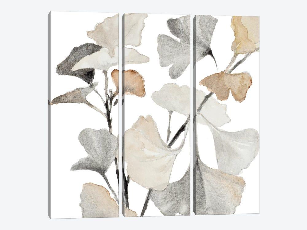 Neutral Ginko Stems I by Lanie Loreth 3-piece Canvas Artwork