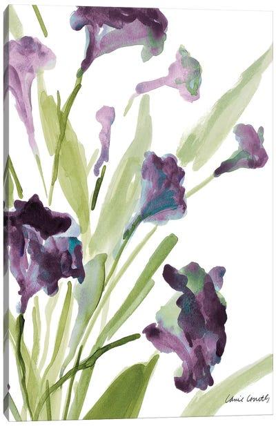 Purple Belles II Canvas Art Print