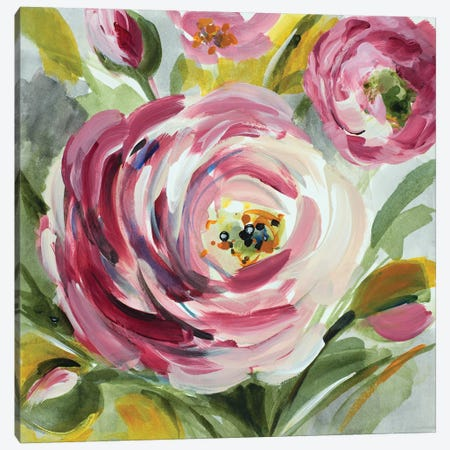 Ranunculus Rosa I Canvas Print #LNL157} by Lanie Loreth Canvas Wall Art