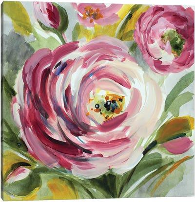 Ranunculus Rosa I Canvas Art Print