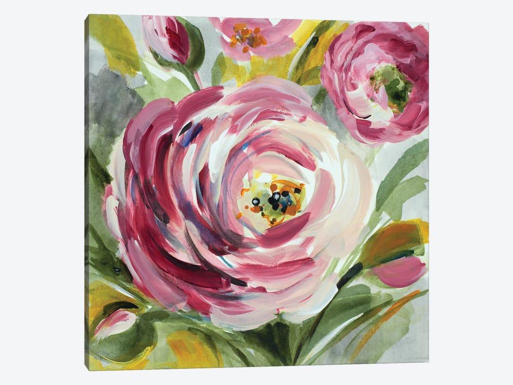 Ranunculus Rosa I by Lanie Loreth 1-piece Canvas Art Print