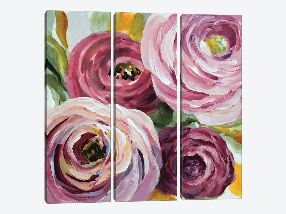 Ranunculus Rosa II by Lanie Loreth 3-piece Canvas Wall Art