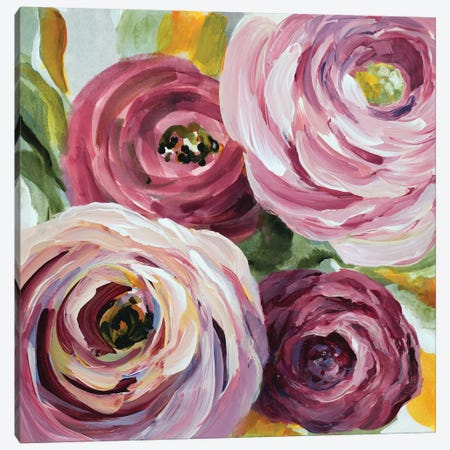 Ranunculus Rosa II Canvas Print #LNL158} by Lanie Loreth Canvas Art Print