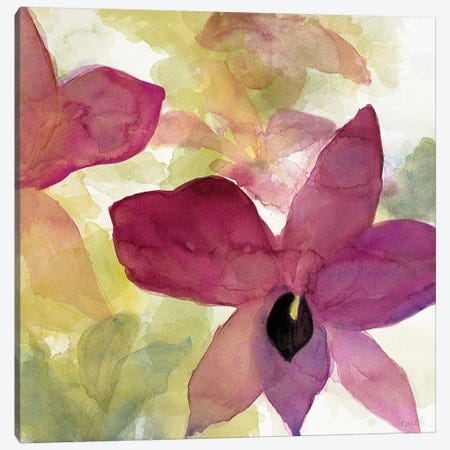 Beautiful and Peace Orchid II Canvas Print #LNL15} by Lanie Loreth Art Print