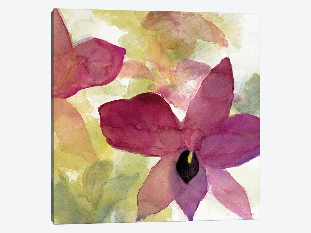Beautiful and Peace Orchid II by Lanie Loreth 1-piece Canvas Art Print