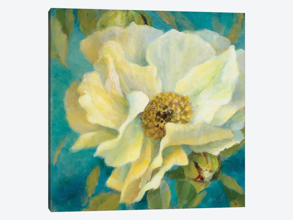 Sen?orita Peony and Buds by Lanie Loreth 1-piece Canvas Artwork