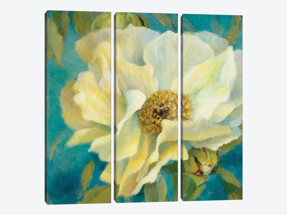 Sen?orita Peony and Buds by Lanie Loreth 3-piece Canvas Artwork