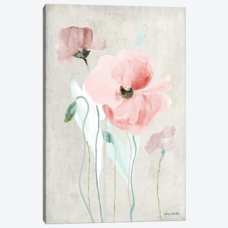 Soft Pink Poppies I Canvas Print #LNL179} by Lanie Loreth Art Print
