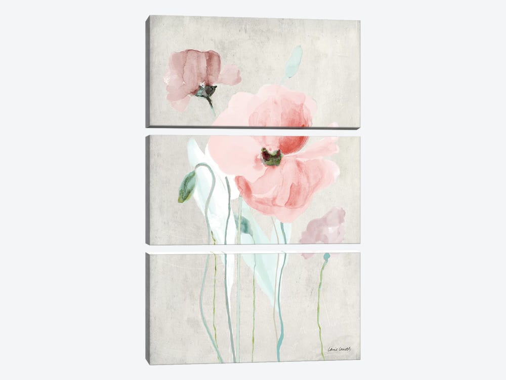 Soft Pink Poppies I by Lanie Loreth 3-piece Canvas Print