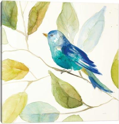 Bird in a Tree I Canvas Art Print
