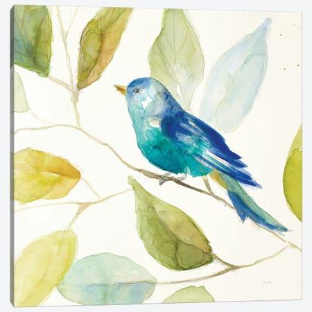 Bird in a Tree I Canvas Print #LNL18} by Lanie Loreth Canvas Artwork