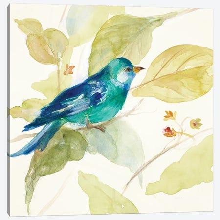 Bird in a Tree II Canvas Print #LNL19} by Lanie Loreth Canvas Art