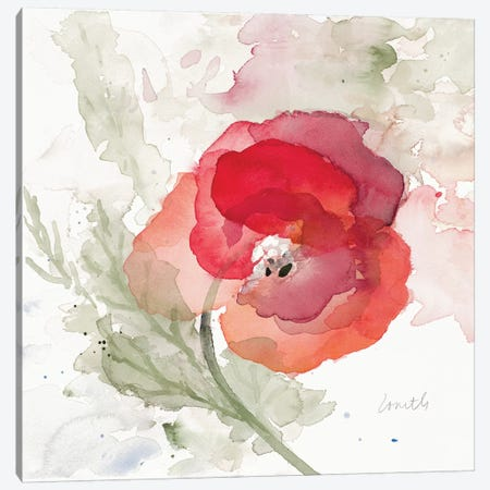 Translucent Poppy II Canvas Print #LNL215} by Lanie Loreth Art Print