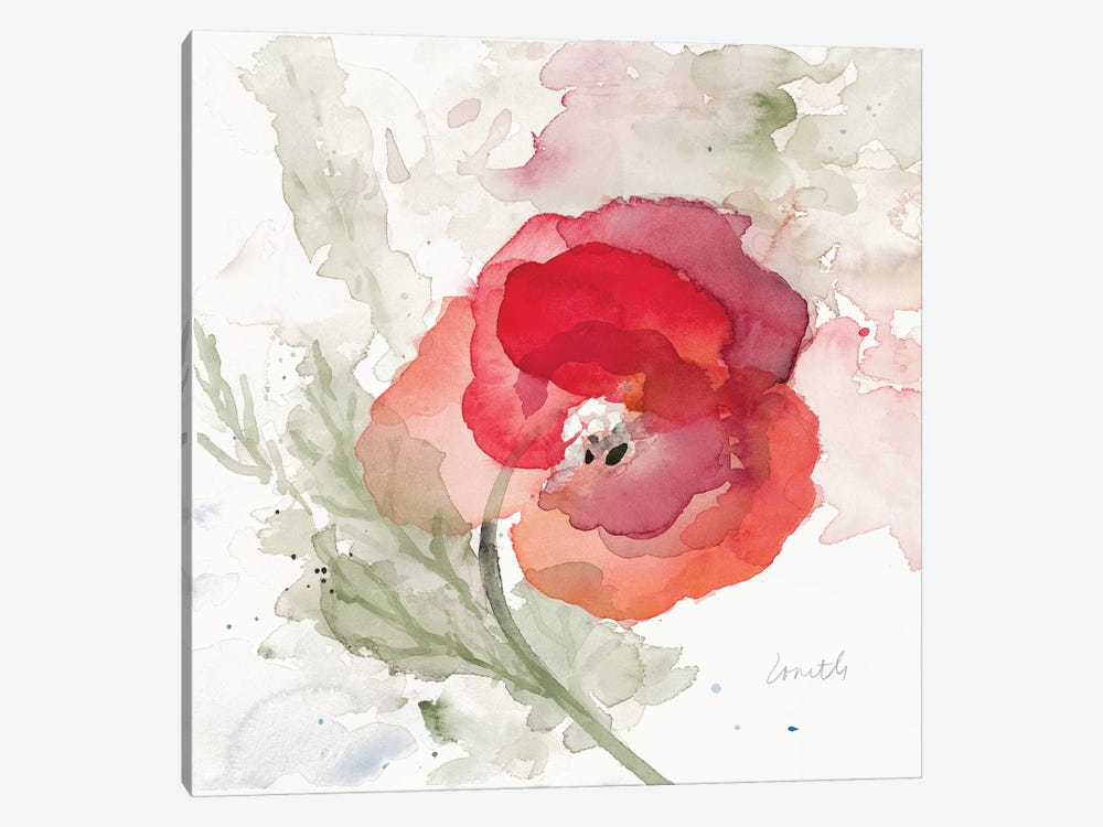 Translucent Poppy II 1-piece Canvas Art Print