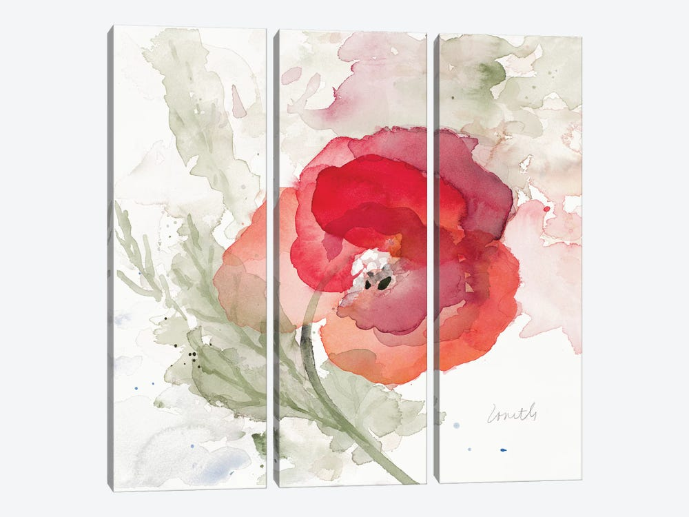 Translucent Poppy II 3-piece Canvas Art Print