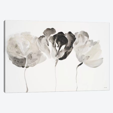 Trio in Light Canvas Print #LNL219} by Lanie Loreth Canvas Art