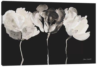 Trio in Light on Black Canvas Art Print
