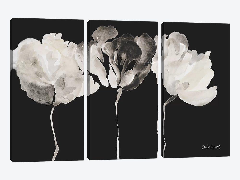 Trio in Light on Black by Lanie Loreth 3-piece Canvas Art Print