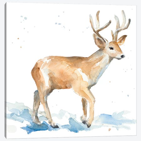 Watercolor Deer Canvas Print #LNL231} by Lanie Loreth Canvas Artwork