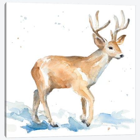 Watercolor Deer Canvas Print #LNL231} by Lanie Loreth Canvas Artwork