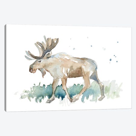 Watercolor Moose Canvas Print #LNL234} by Lanie Loreth Art Print