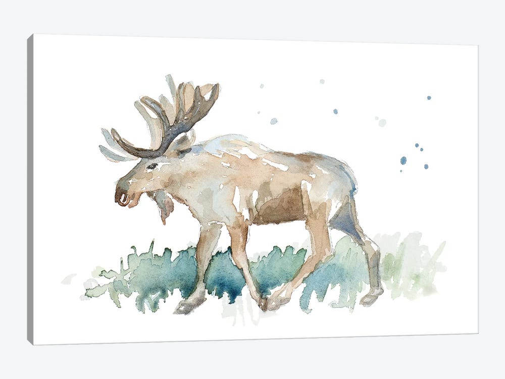 Watercolor Moose by Lanie Loreth 1-piece Canvas Art