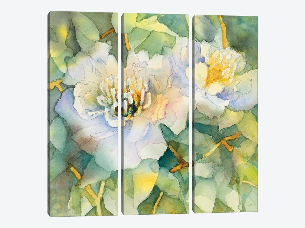 White Peony Garden by Lanie Loreth 3-piece Canvas Print