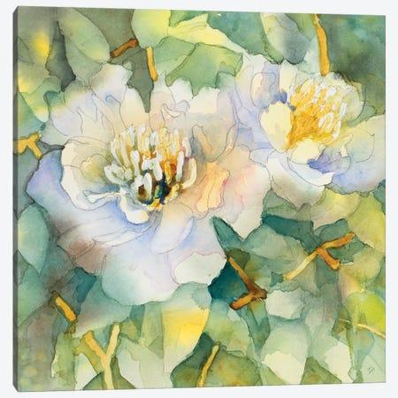 White Peony Garden Canvas Print #LNL237} by Lanie Loreth Canvas Print
