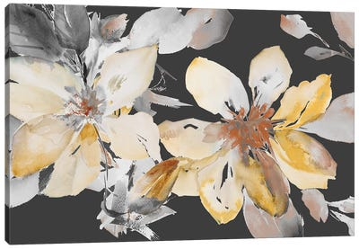 Yellow Clematis on Grey Canvas Art Print