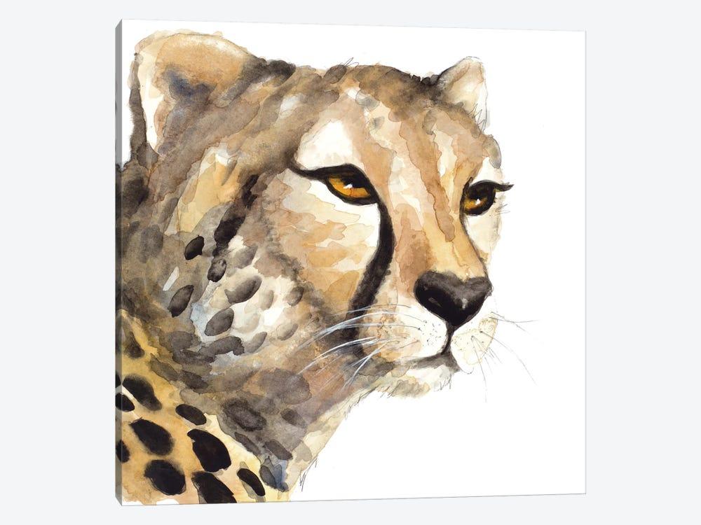 Cheetah Portrait by Lanie Loreth 1-piece Canvas Art Print