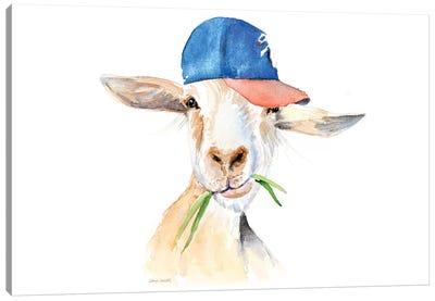 Cool Goat Canvas Art Print