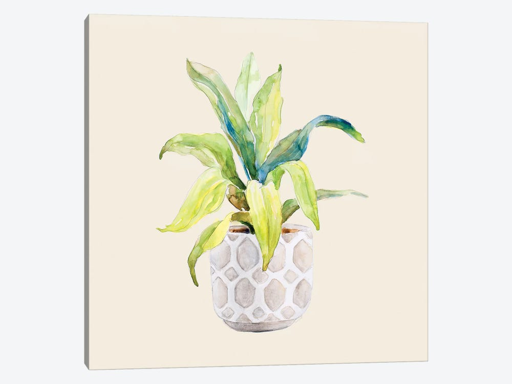 Decorative Potted Plant I 1-piece Art Print