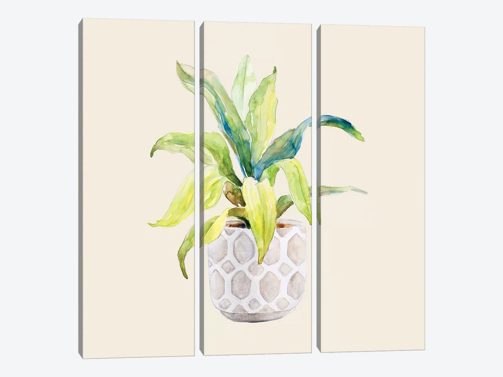 Decorative Potted Plant I by Lanie Loreth 3-piece Canvas Art Print