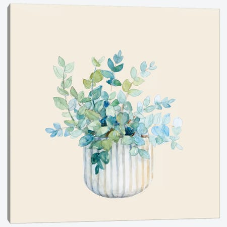 Decorative Potted Plant IV Canvas Print #LNL317} by Lanie Loreth Canvas Artwork