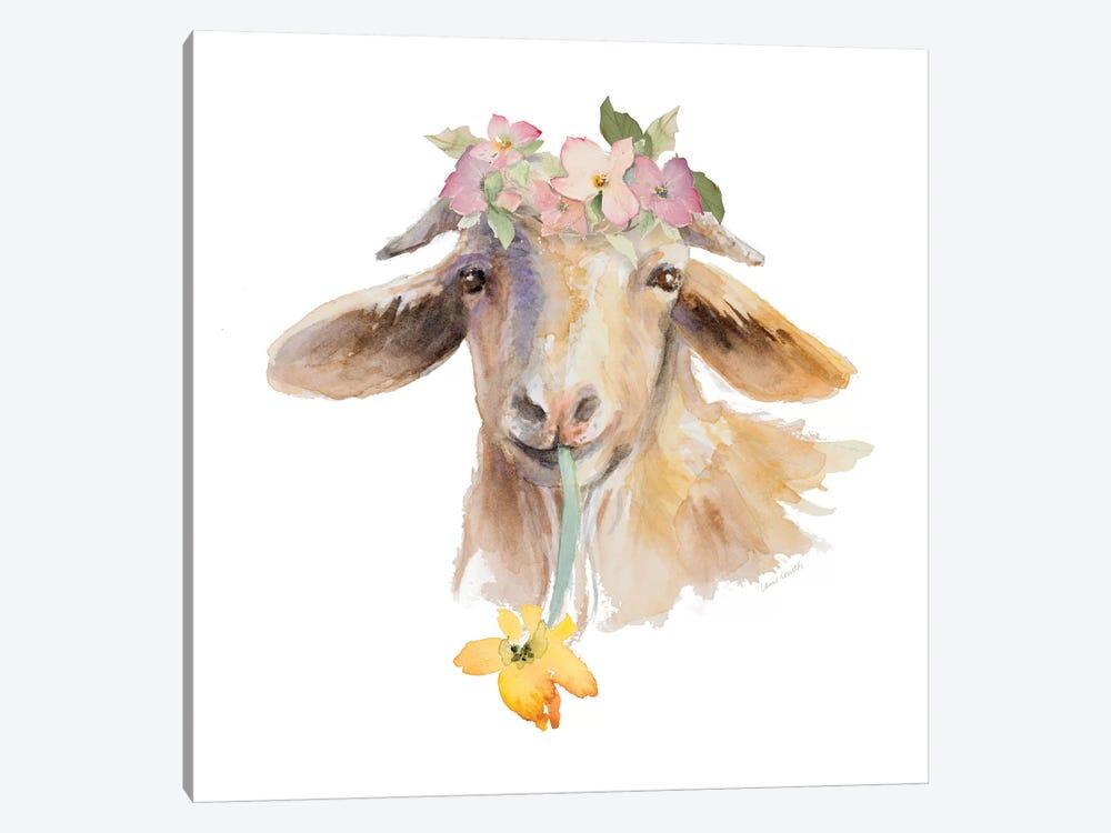 Flower Goat by Lanie Loreth 1-piece Canvas Wall Art