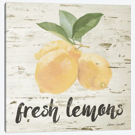 Fresh Lemons Canvas Print #LNL328} by Lanie Loreth Canvas Wall Art