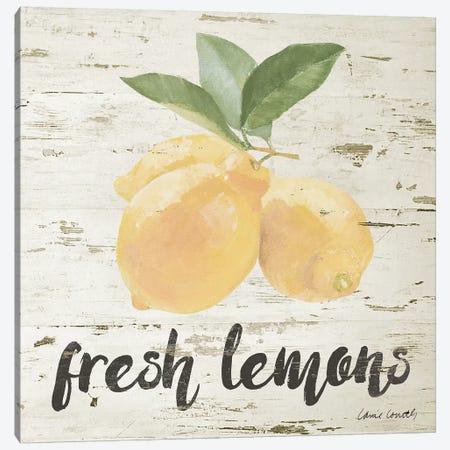 Fresh Lemons Canvas Print #LNL328} by Lanie Loreth Canvas Wall Art