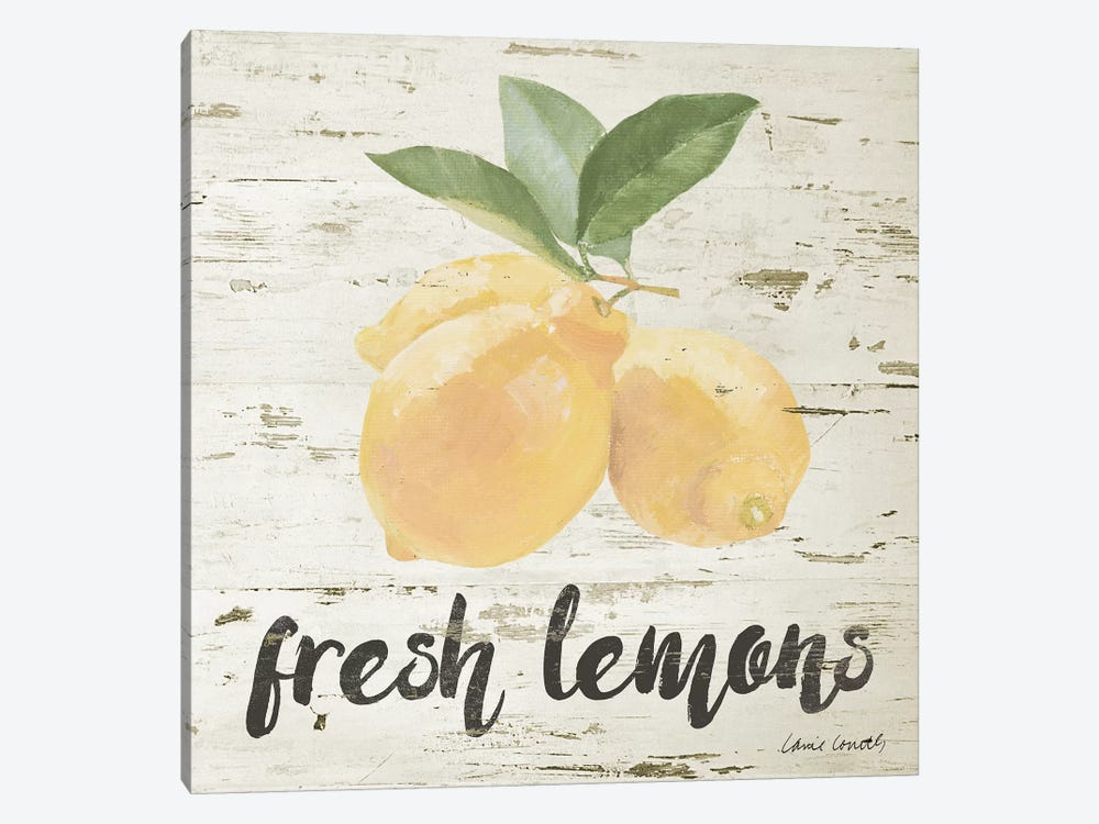 Fresh Lemons by Lanie Loreth 1-piece Canvas Artwork