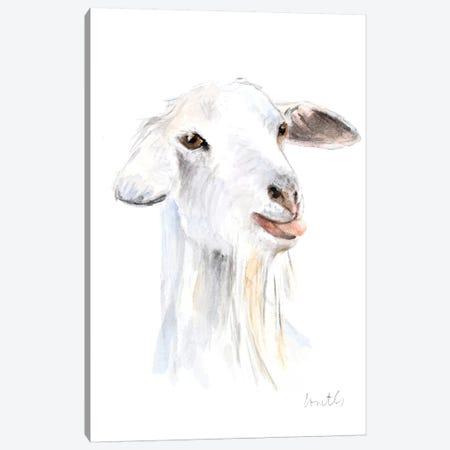 Goat I Canvas Print #LNL333} by Lanie Loreth Art Print