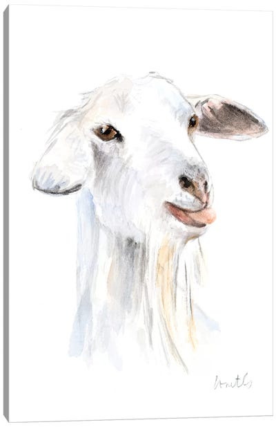 Goat I Canvas Art Print