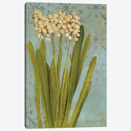 Hyacinth On Teal II Canvas Print #LNL349} by Lanie Loreth Canvas Wall Art