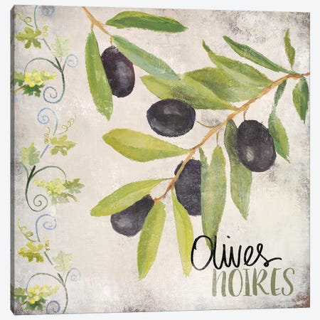 OlIVes Noires Canvas Print #LNL378} by Lanie Loreth Art Print