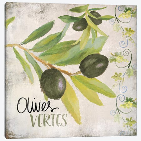 OlIVes Vertes Canvas Print #LNL379} by Lanie Loreth Canvas Art Print