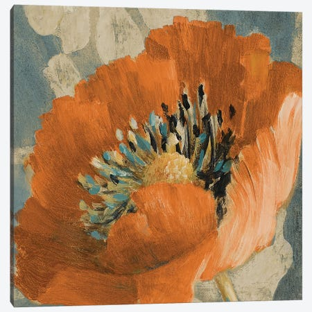 Orange Poppy Canvas Print #LNL380} by Lanie Loreth Canvas Wall Art