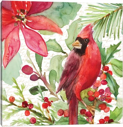 Poinsettia And Cardinal I Canvas Art Print